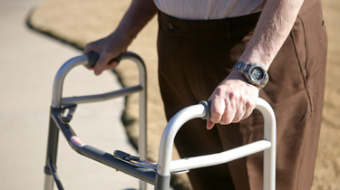 fall prevention web