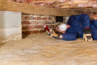 man doing termite inspection web