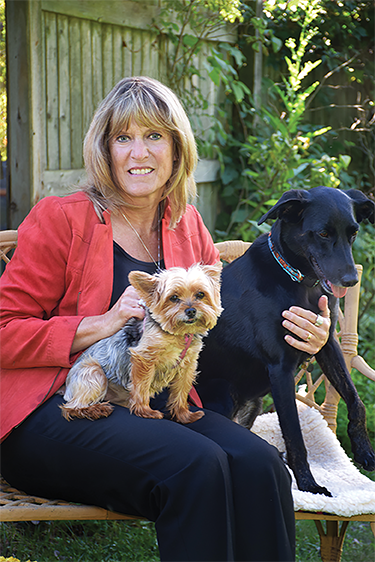 Sally Handlon dogs web